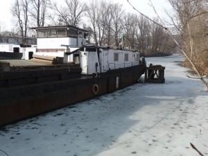 ...a tak jsem si odběhla k vodě. Ano, to bílé okolo lodi je led!